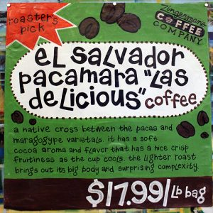 ElSalvadorPacamara1
