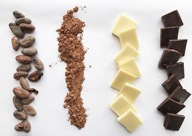 Chocolate 101 at Zingerman's