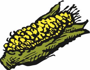 Zingerman's Corn Cob