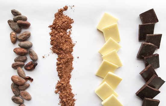 Zingerman's Chocolates - different states from nib to bar
