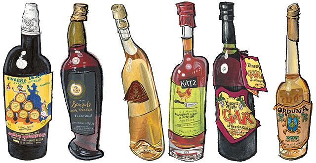 Bottles of vinegar in zingy illustration side