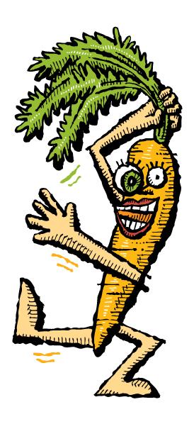 Zingerman's Illustration of a Crazy Carrot