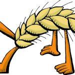 Versatile Grains to Try